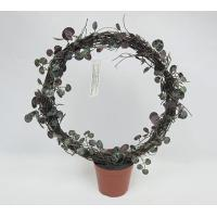 25CM(D) X 38CM(H) ROSARY VINE IN ROUND SHAPE ON BROWN PLASTIC POT.