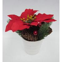 H: 7.50 / 19CM MPC POINSETTIA / ANGEL PINE / BERRIES / PINECONE ARRANGE IN WHITE PLASTIC POT.